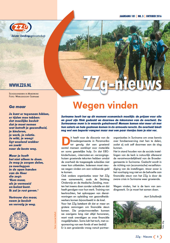 ZZg Nieuws 2016 3 cover